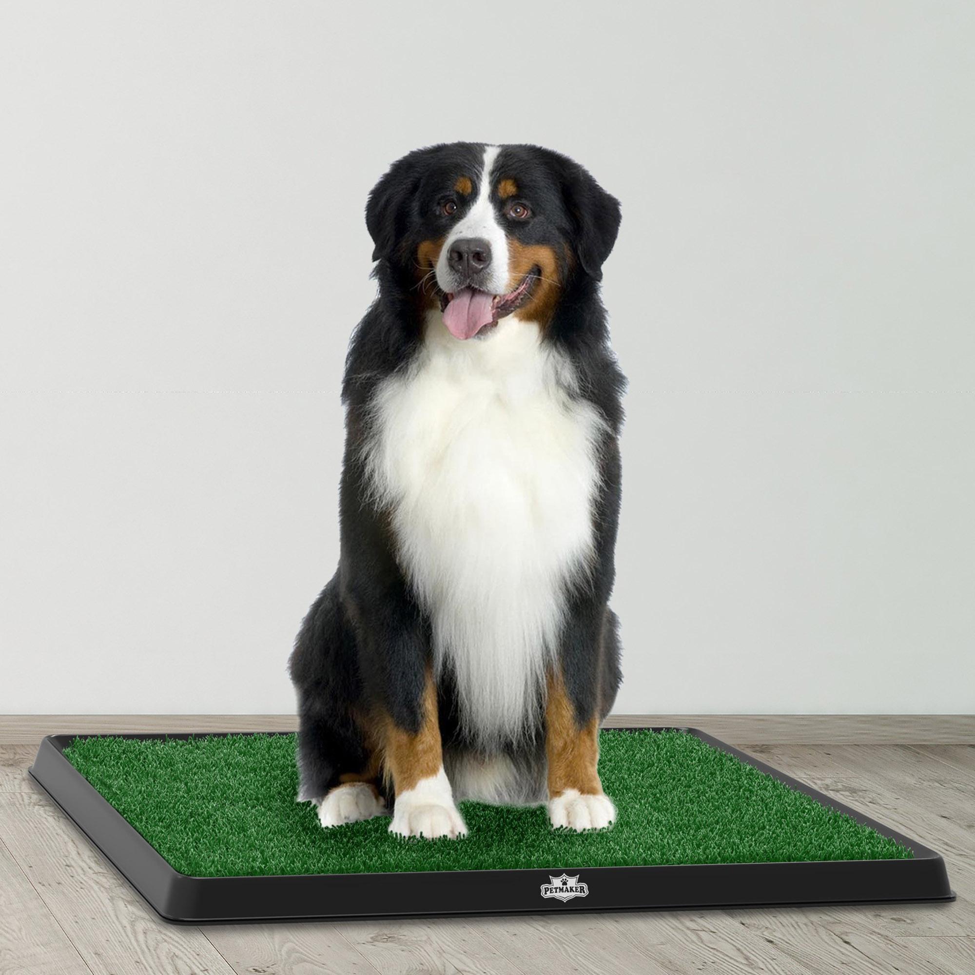 Dog Indoor Potty Trainer