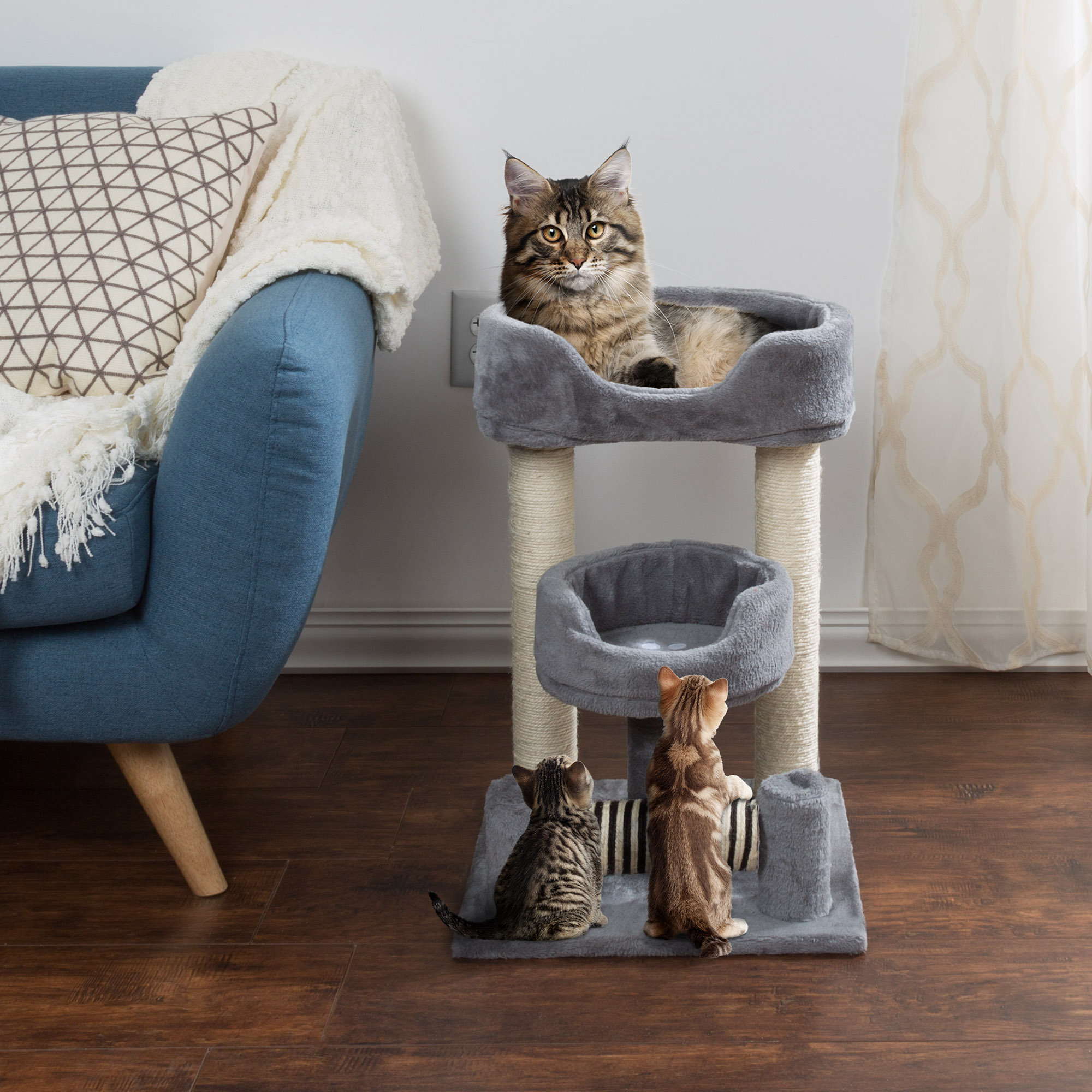Perch Style Cat Trees