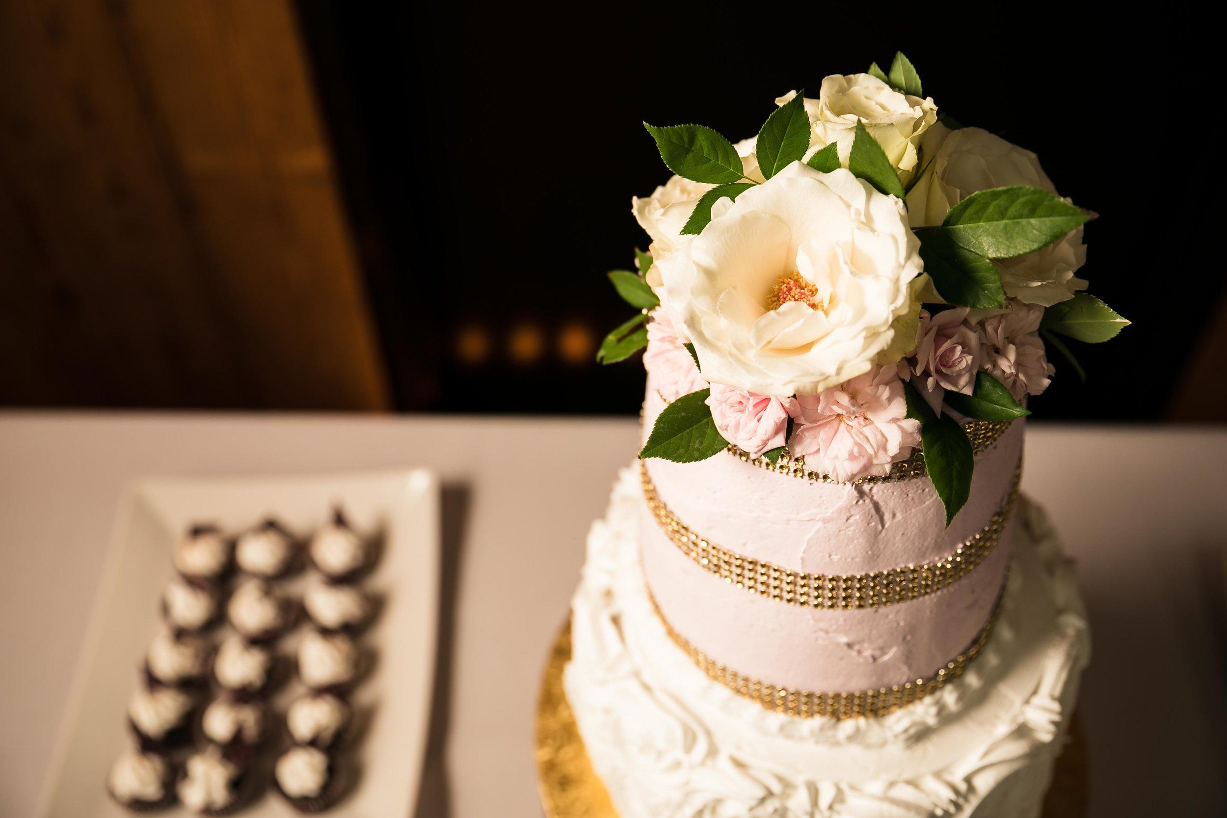 indian_ reception_southern_california_wedding_joshuachun_photography-1.JPG