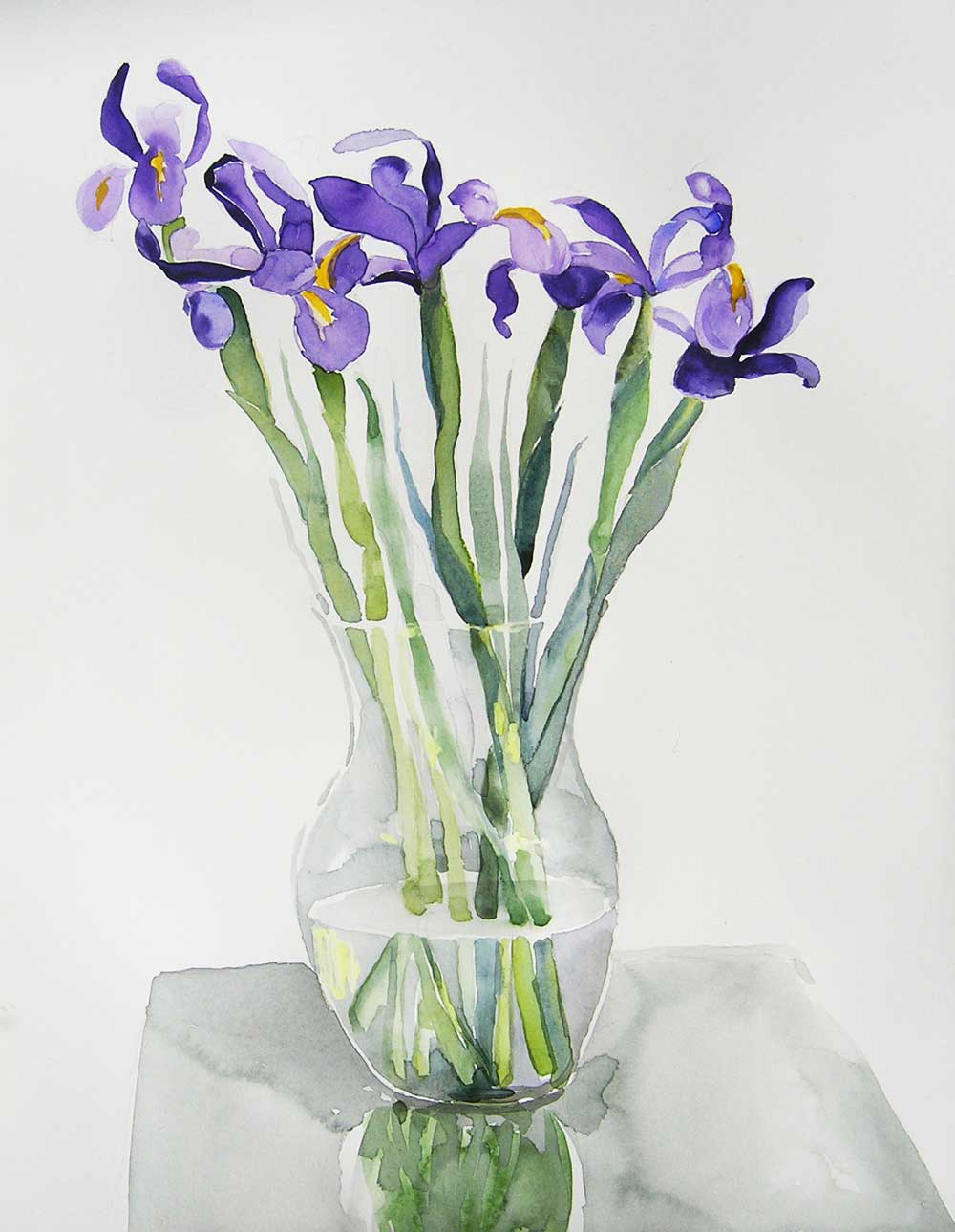 Iris on white: Watercolor on Arches 140# hp, 12 x 16 in / 31 x 41 cm