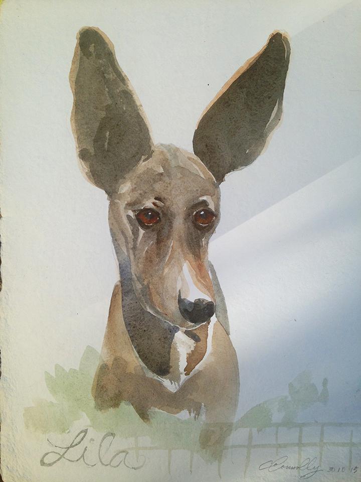 Lila: watercolor, handmade paper cp, 10 x 13 in / 26 x 33 cm
