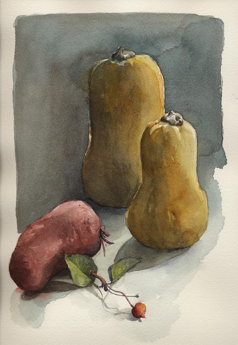 coco-connolly-watercolor-squash-sweet-potato.jpg