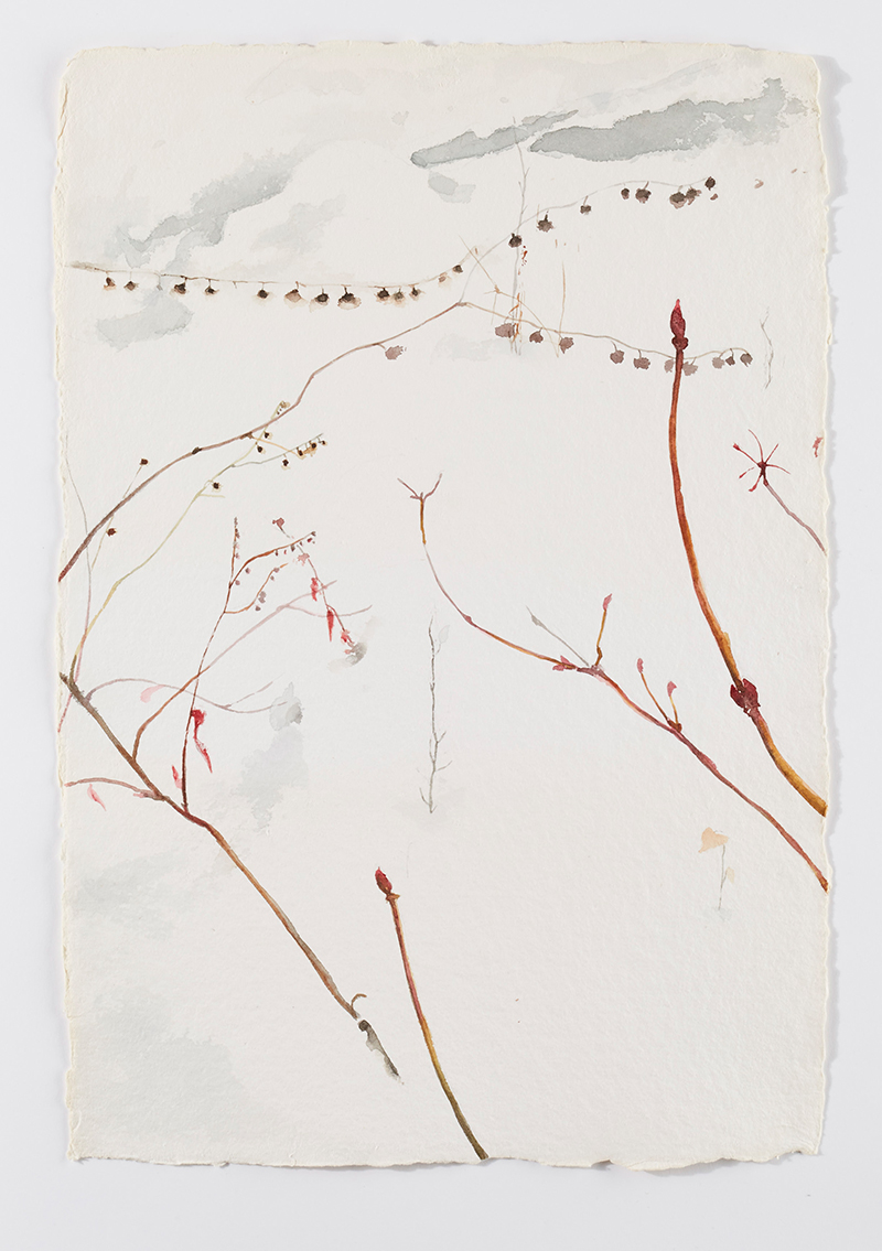 Weeds in snow 2: Watercolor on handmade paper, 12 x 18 in / 31 x 46 cm