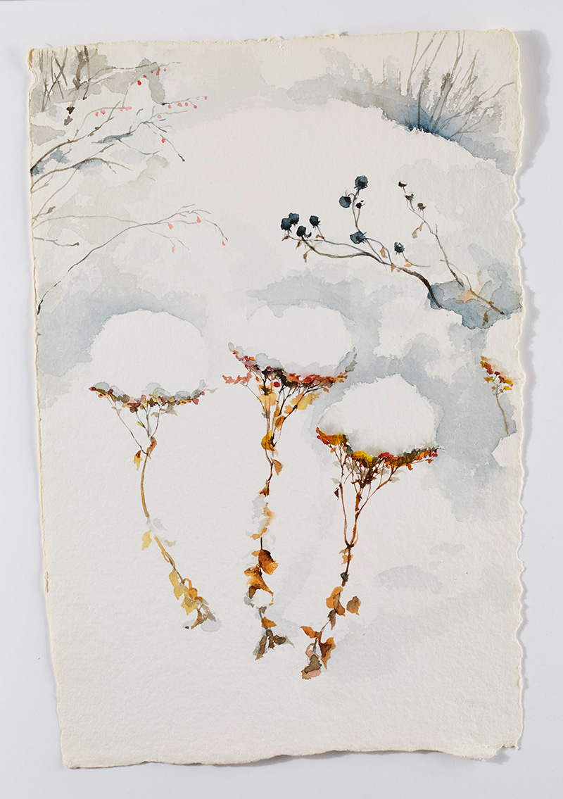 Weeds in snow 4: Watercolor on handmade paper, 12 x 18 in / 31 x 46 cm