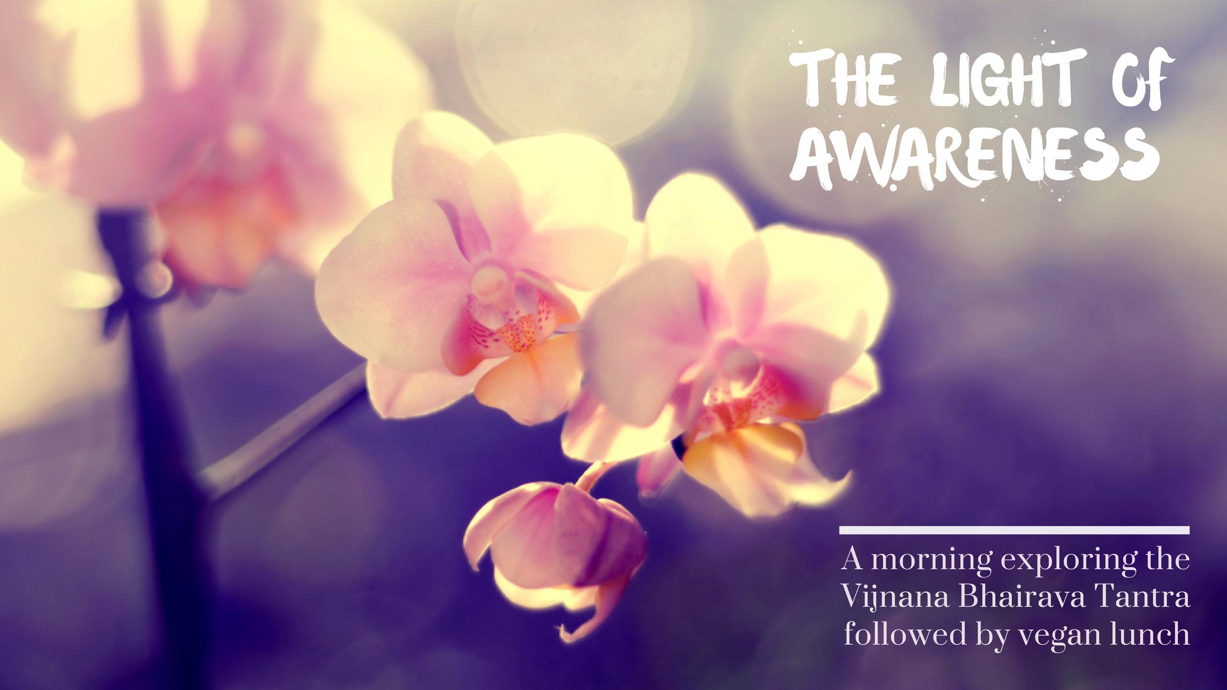 The Light Of Awareness.jpg