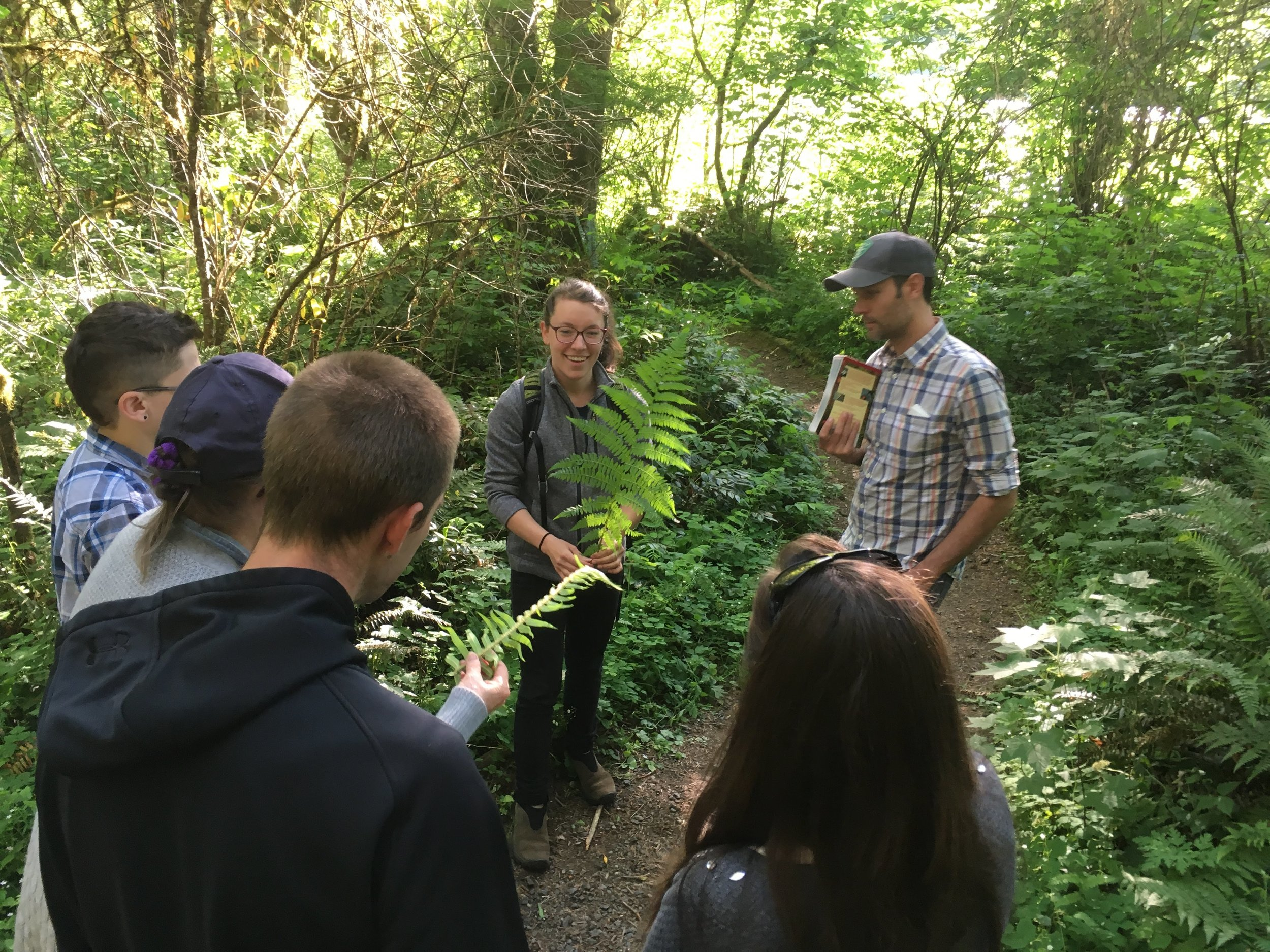 Plant identification along the trail at McLane Creek!
