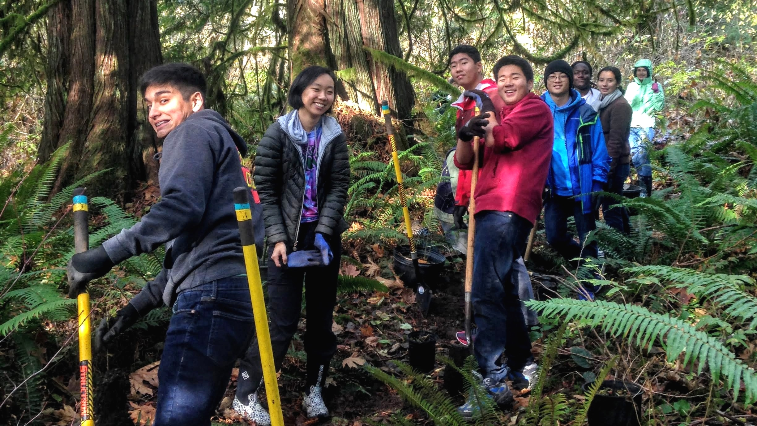 Oly HS students planting at McLane Creek.