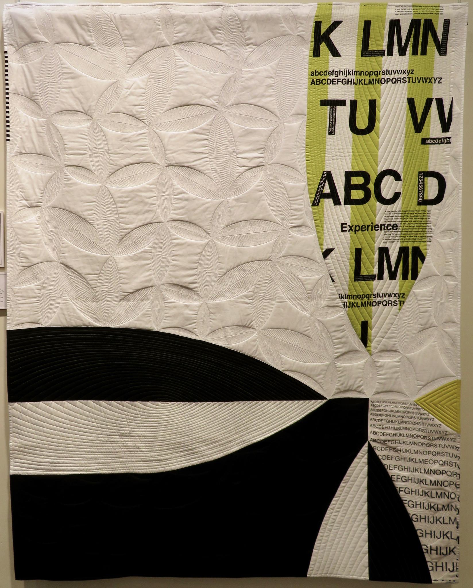 """1st Place: Infinite Magnification  50"""" x 63"""" By Christine Perrigo Denver Metro MQG Erie, Colorado @ccpquilt"""