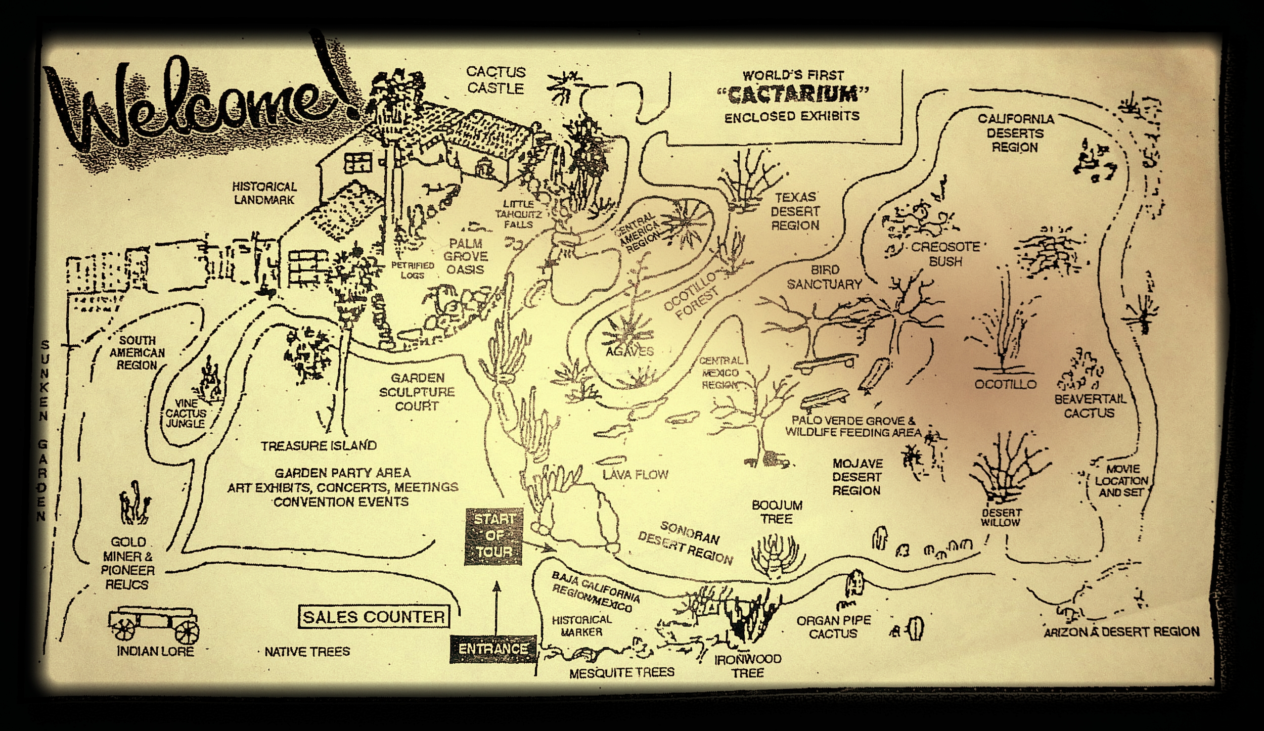 A map of Moorten's Botanical Garden and Cactarium. Visitors should begin the nature trail in the Baja California Region.