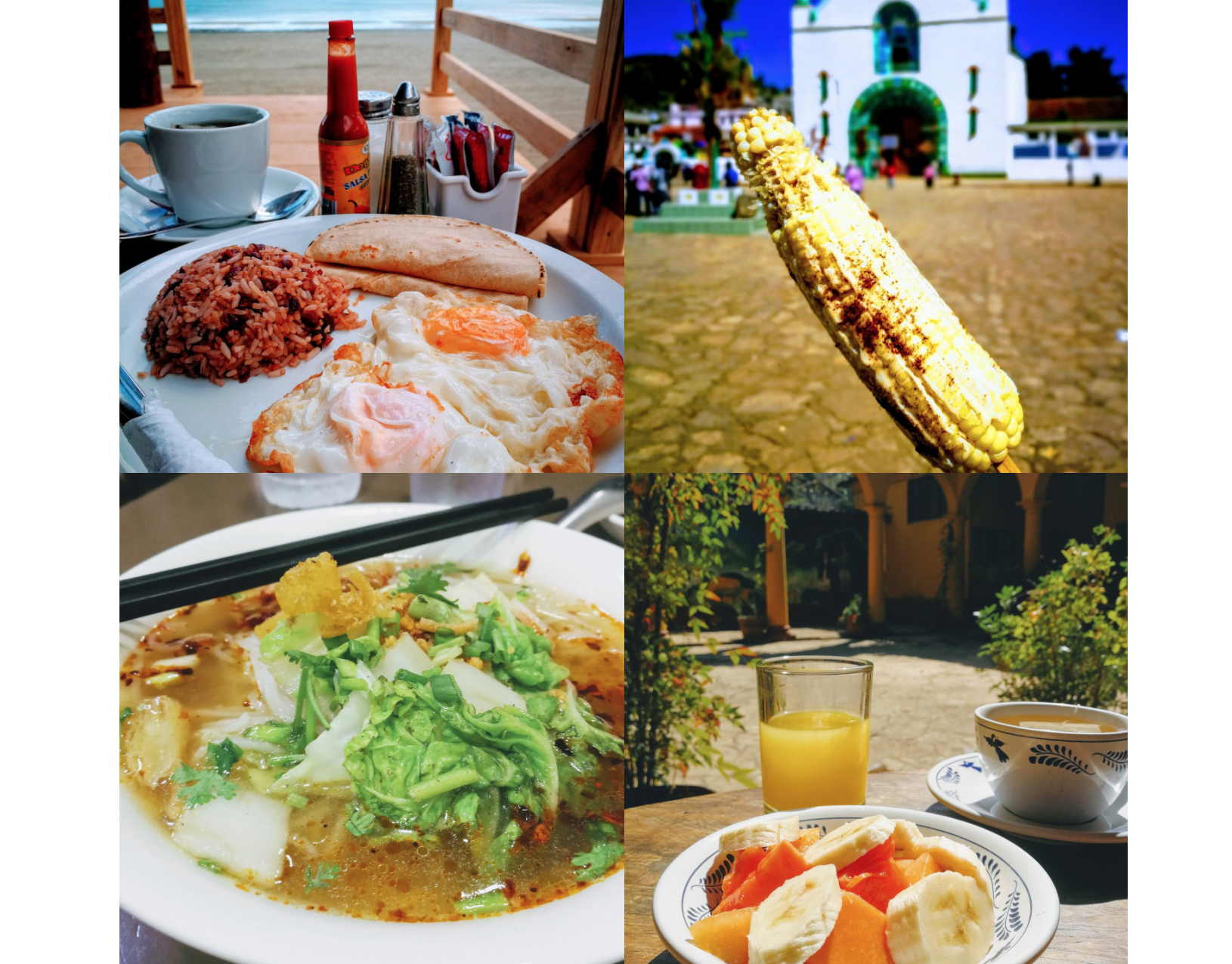 Traveling the world vegetarian or vegan isn't that hard.  I always travel vegetarian (or full vegan if I am in a place with lots of plant-based options) and I have eaten like a queen on my world travels... just look at these delicious dishes!