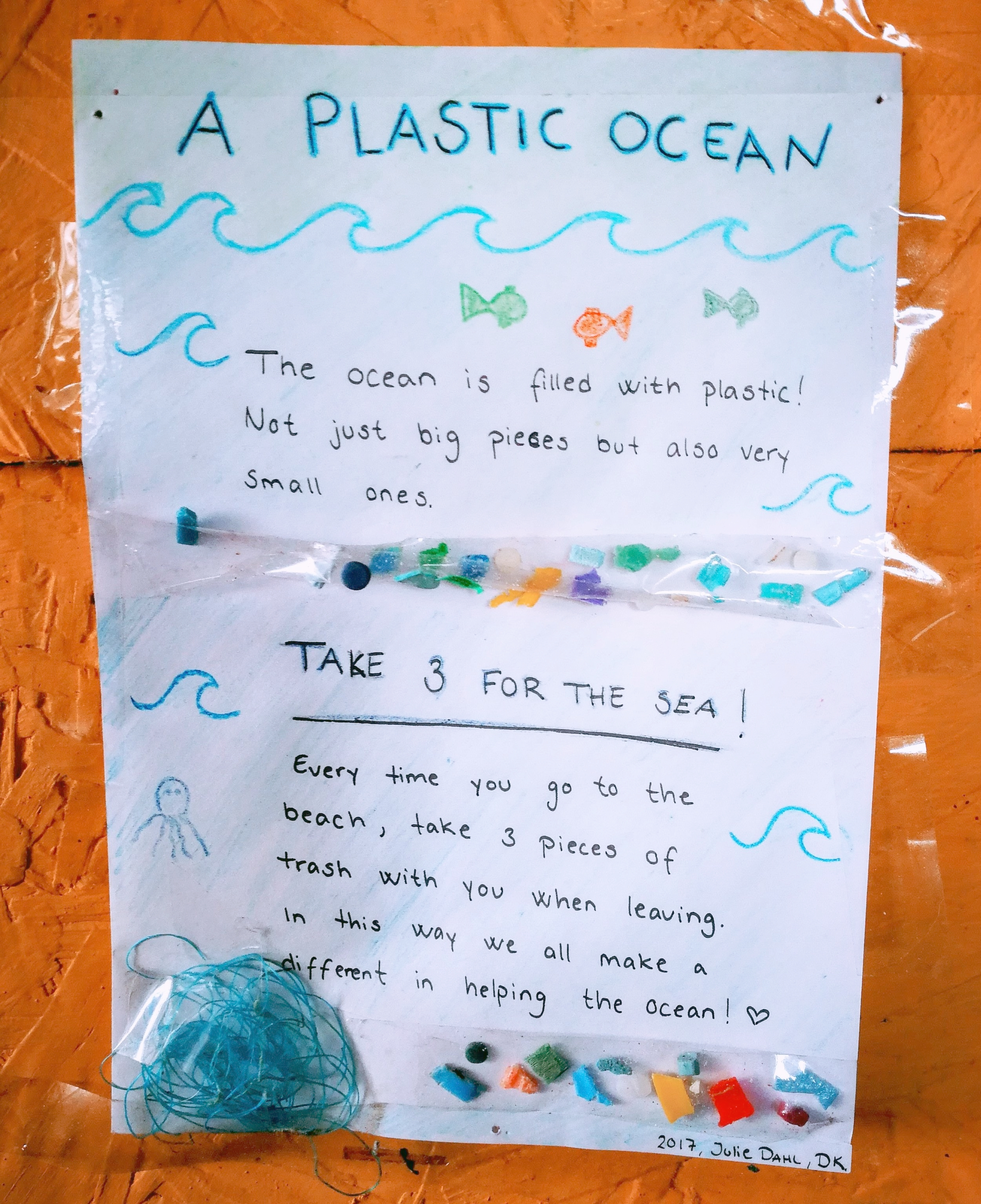 Take three for the sea awareness save the oceans Viejo Lobo hostel cabo polonio