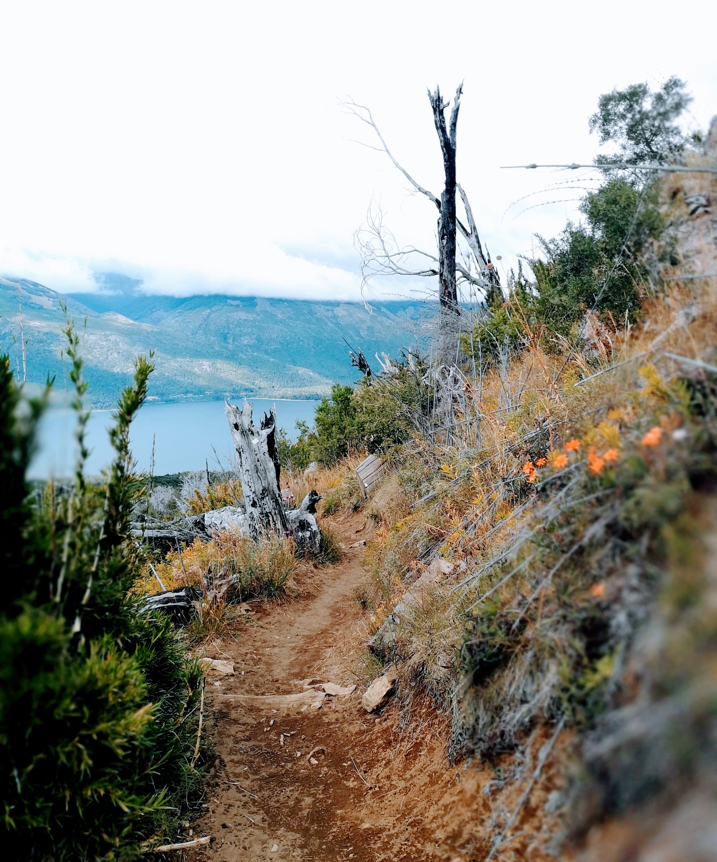 refugio frey bariloche hiking hike guide free argentina patagonia trail lake spring summer