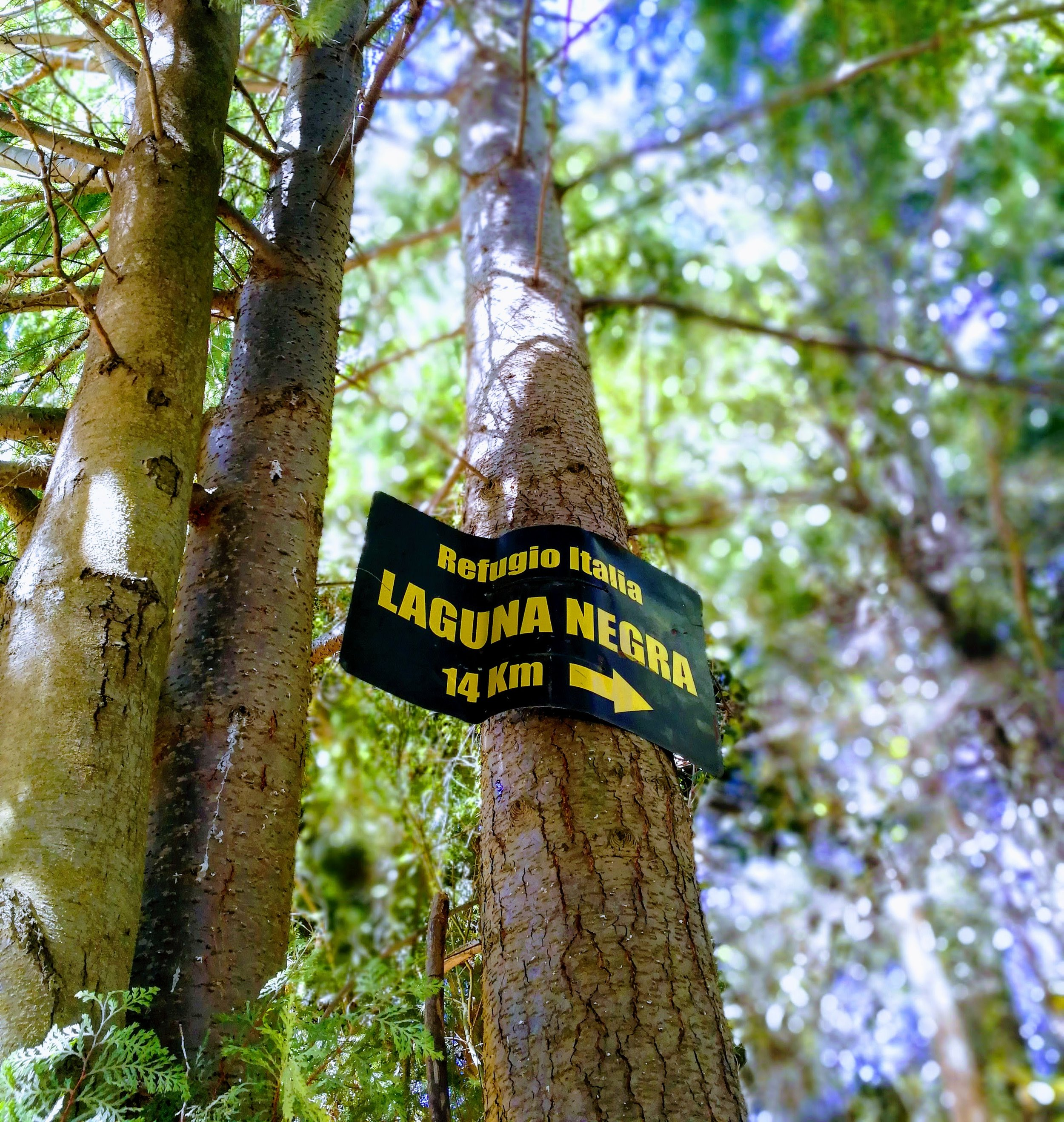 The trailhead to Laguna Negra is 100 meters beyond the bridge over Arroyo Goye. The sign is easy to miss, so keep your eyes peeled!