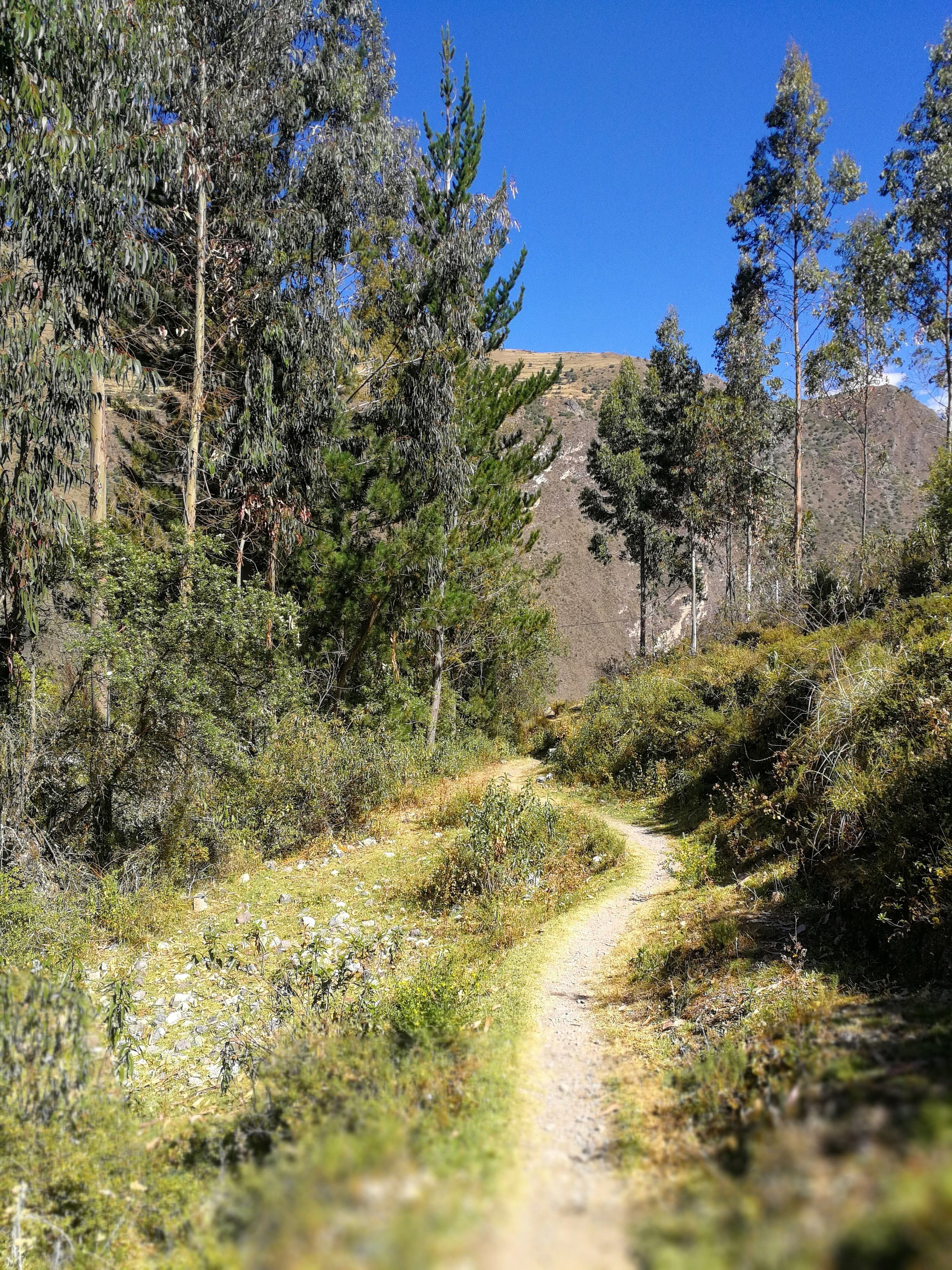 The hiking trail to the Pumamarca ruins from Ollantaytambo, Peru. Discover Peruvian history and enjoy a trek in the Andes.