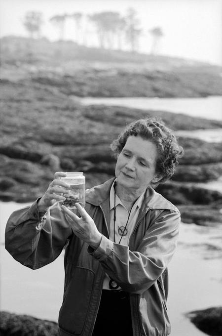 Rachel Louise Carson (1907-1964) was an American marine biologist, author, and conservationist whose book Silent Spring and other writings are credited with advancing the global environmental movement.