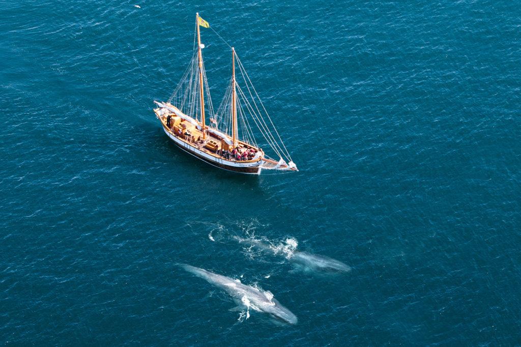 source: North Sailing