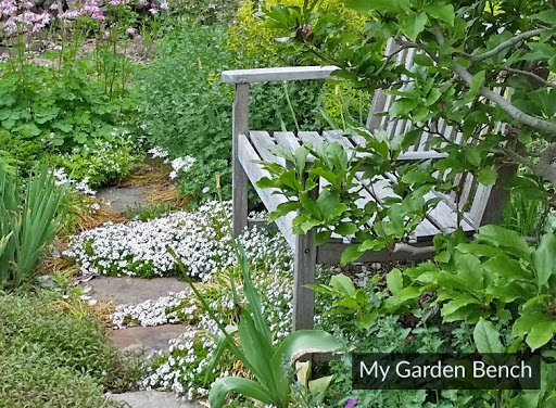My Garden Bench