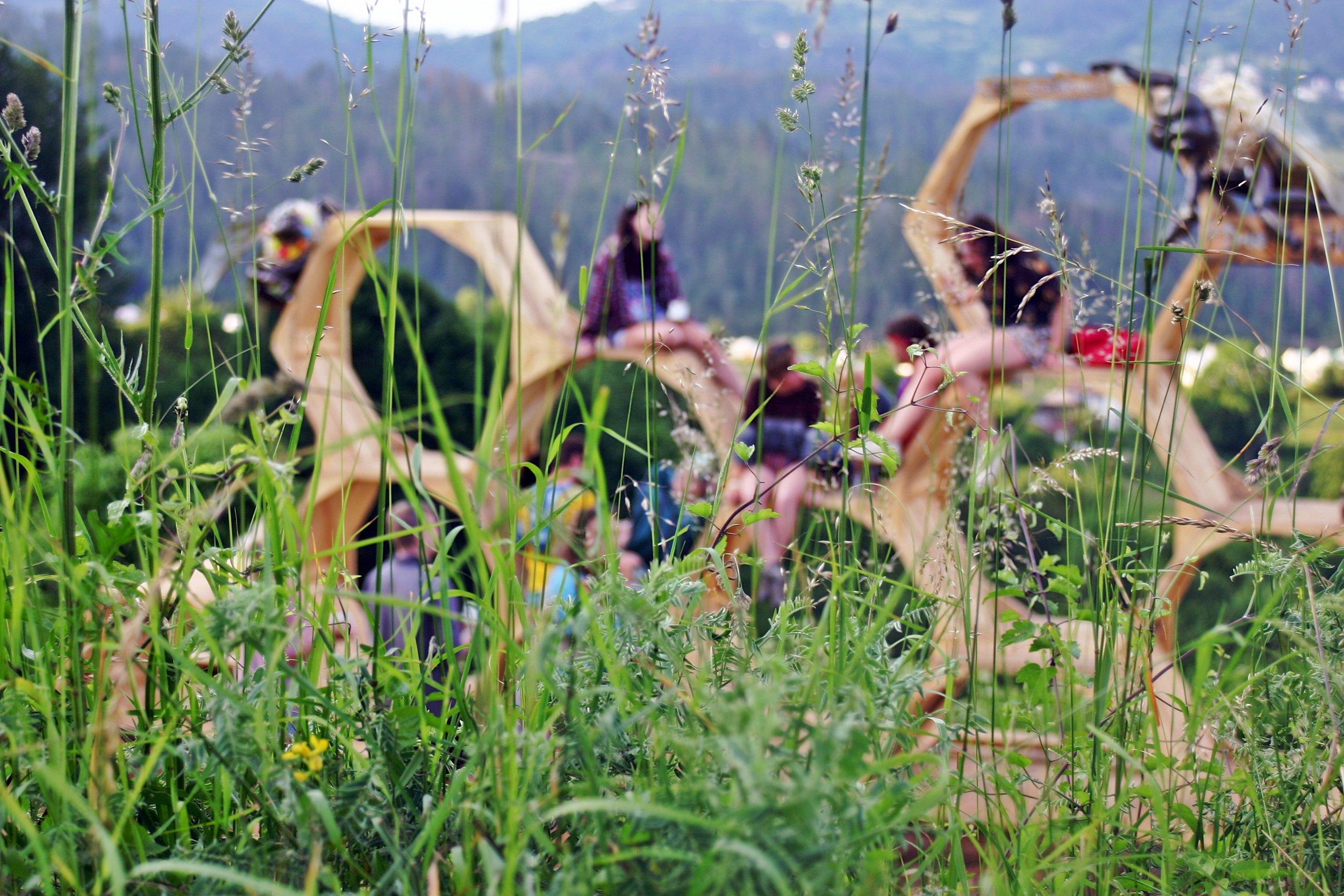 MEADOWS IN THE MOUNTAIN - BULGARIA