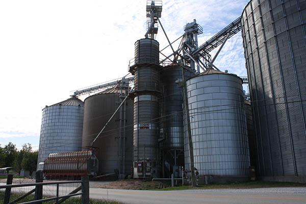 Loretto Grain