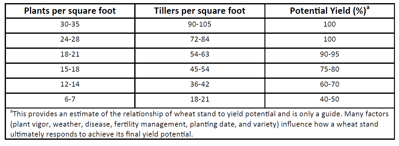 Table 1. Wheat yield potential for a range of tillers and plants per square foot.