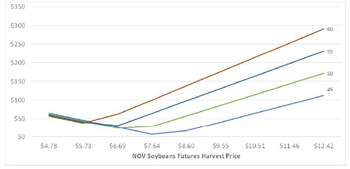 Figure 1. Return over Total Inputs, Land, and Overhead Costs for 2019 Western Kentucky Double-Crop Soybeans.