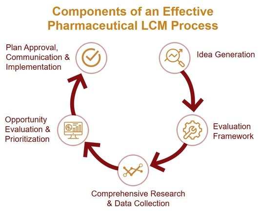RxC International Components of an Effective Pharma Life Cycle Management Process