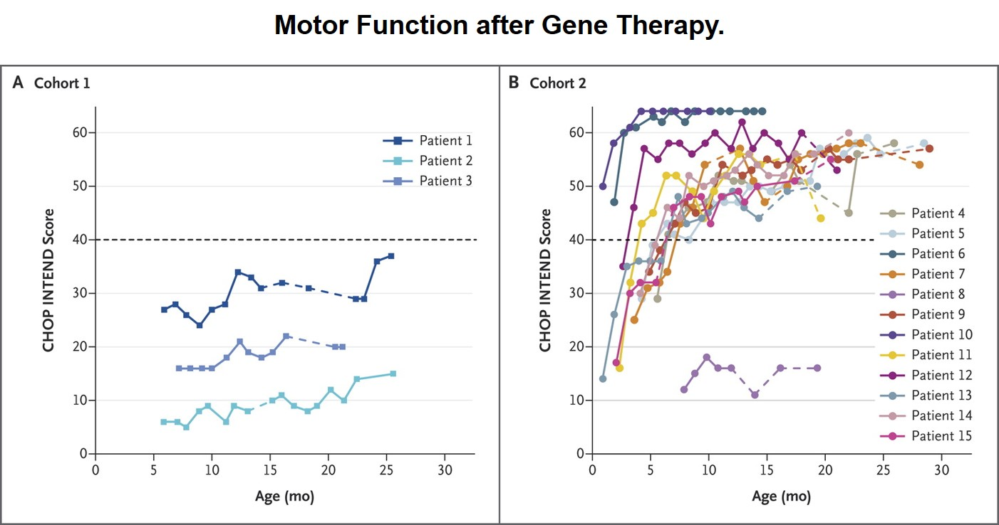 This chart illustrates the Children's Hospital of Philadelphia (CHOP) Infant Test of Neuromuscular Disorders (INTEND) score for patients in Cohort 1 who did not receive the gene therapy and patients in Cohort 2 who did receive the gene therapy. Source:  NEJM
