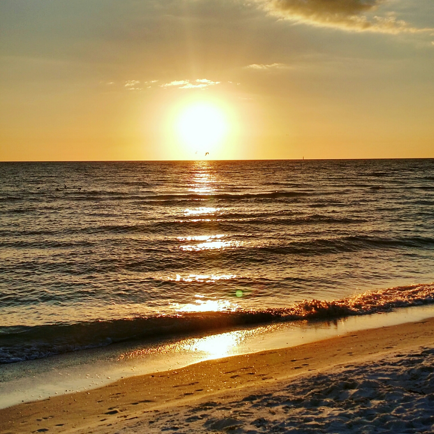 Our beautiful view from the beach in St. Petersburg Florida