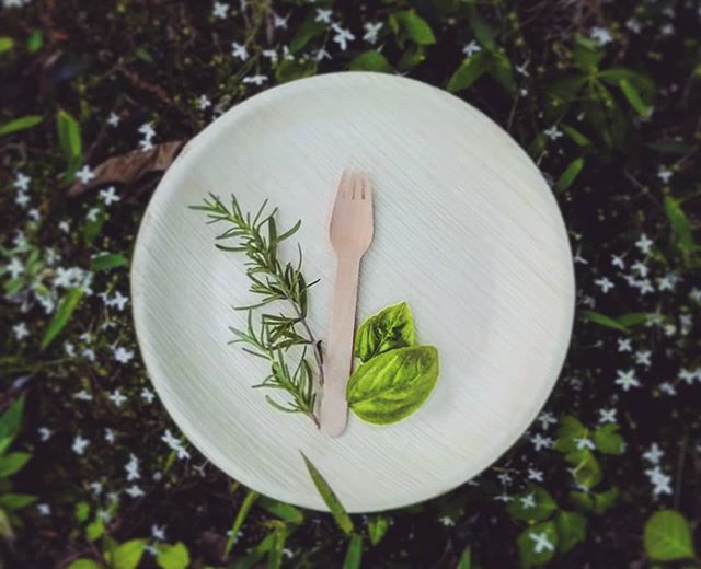 Happy #earthday 🌎 we have upgraded to completely biodegradable plates and cutlery made of bamboo and palm leaves. Now when you book us for Catering, you can be sure that your #scenicevents are #greenevents 💚 . . . . . #weddingprofessionals #weddings #weddingfood #wedding #catering #instawedding #bride #brideandgroom #groom #weddingplanning #weddingpro #ecofriendly #greencompany #biodegradable #chattanoogaweddings #Chattanooga #cha