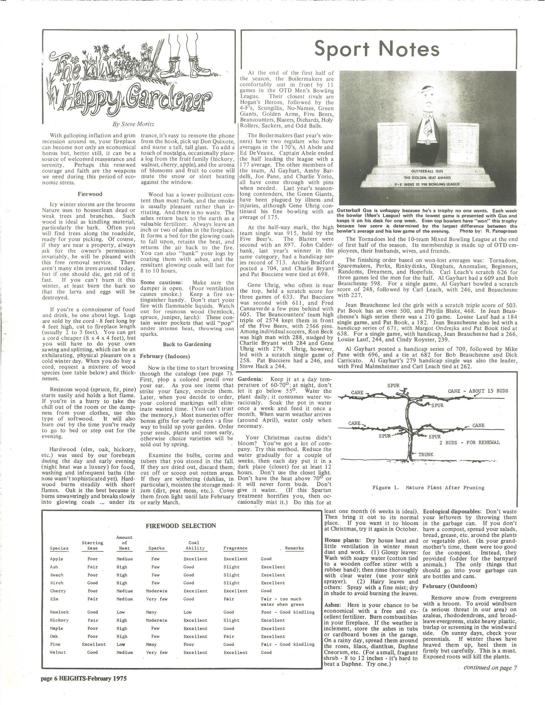 vol 8 num 1 page 6.jpg