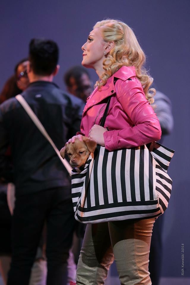 Elle in  LEGALLY BLONDE  with Brody (Bruiser). (2018)  Fair Moon Stages  Photo by Rich Kowalski