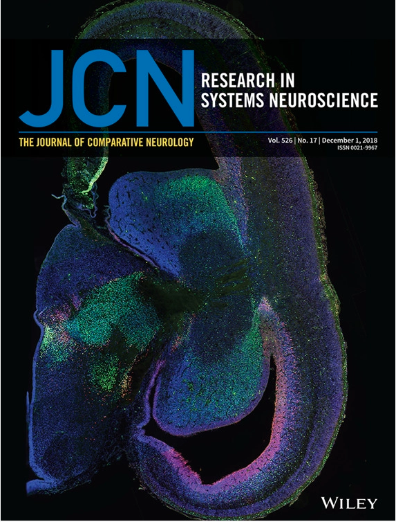 PUBLICATION MAKES FRONT COVER OF JOURNAL OF COMPARATIVE NEUROLOGY