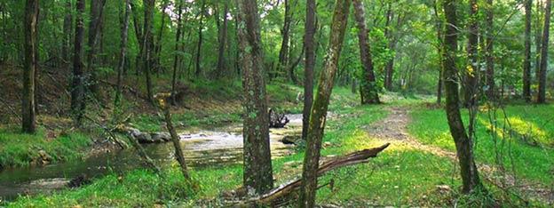 Beavers Bend River
