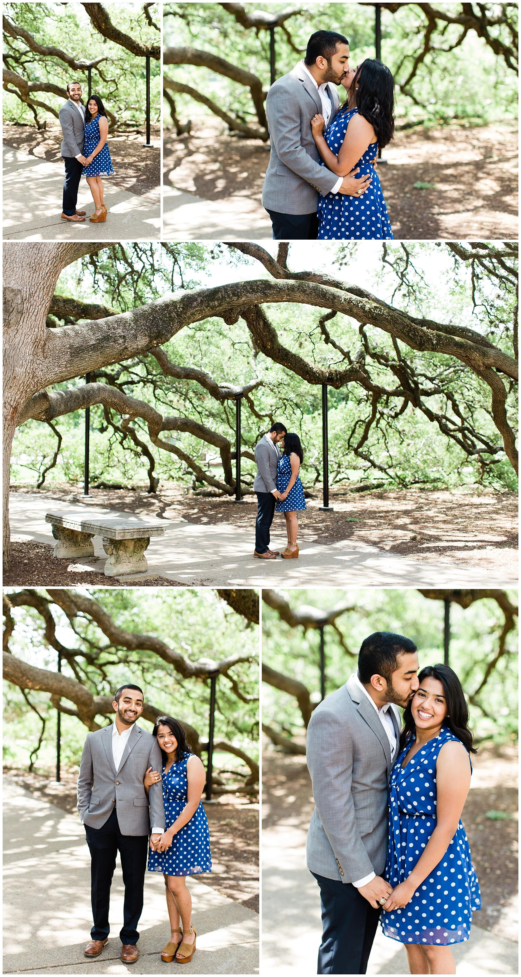 Century_Tree_Proposal_0004.jpg