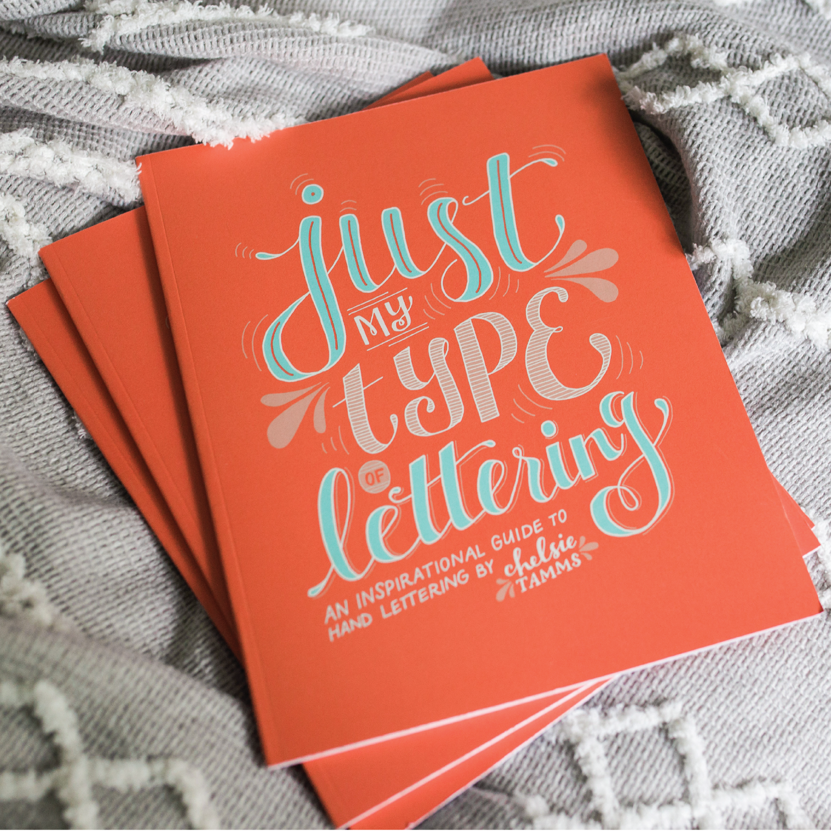 Just My Type of Lettering Book