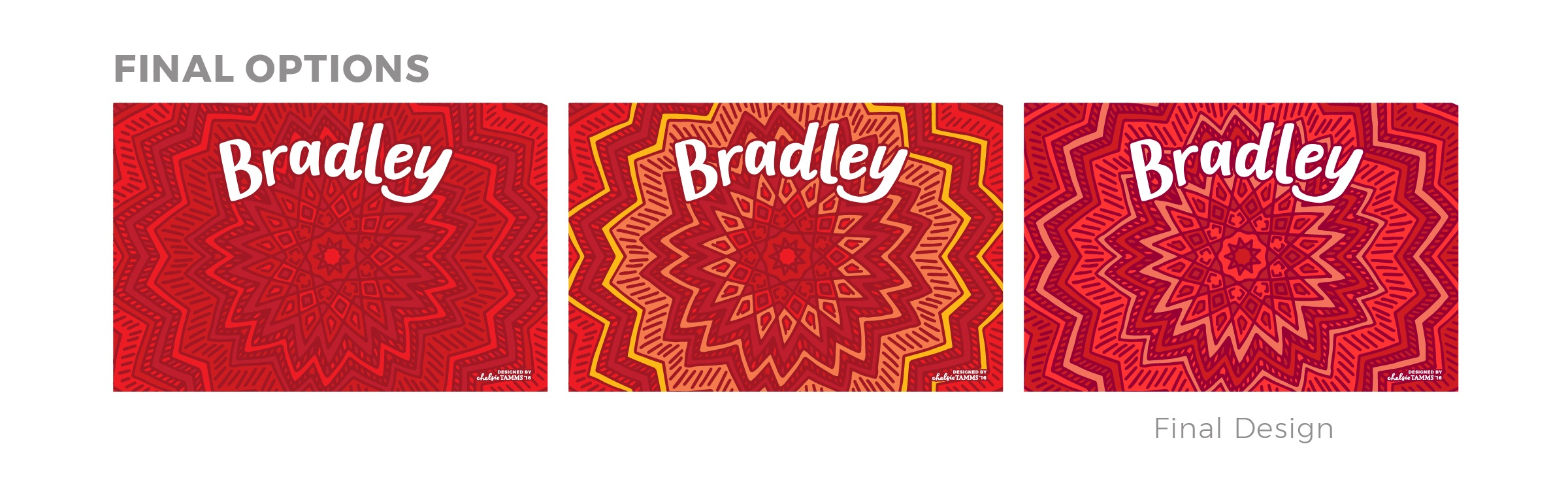 Bradley Mural Design - Final Design Options