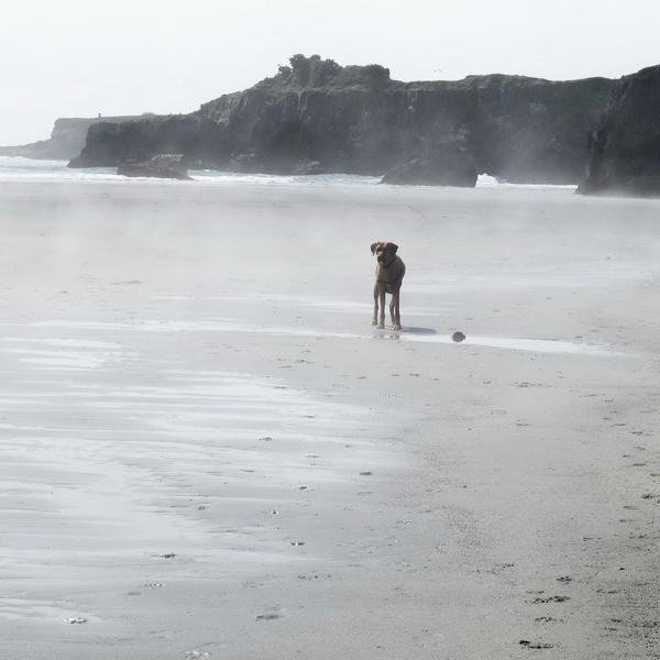 Jake at beach 041014.jpg