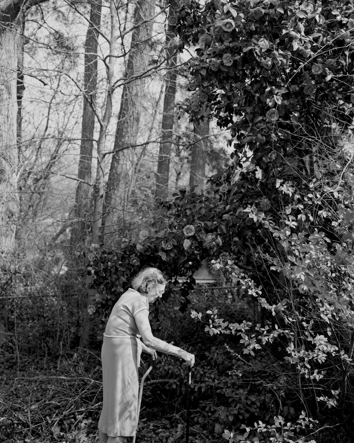 Susan Worsham , Margaret with Giant Camellia Japonica,  2012.Archival pigment print, 50 x 40 inches.Image courtesy of the artist and Candela Books +Gallery, Richmond.