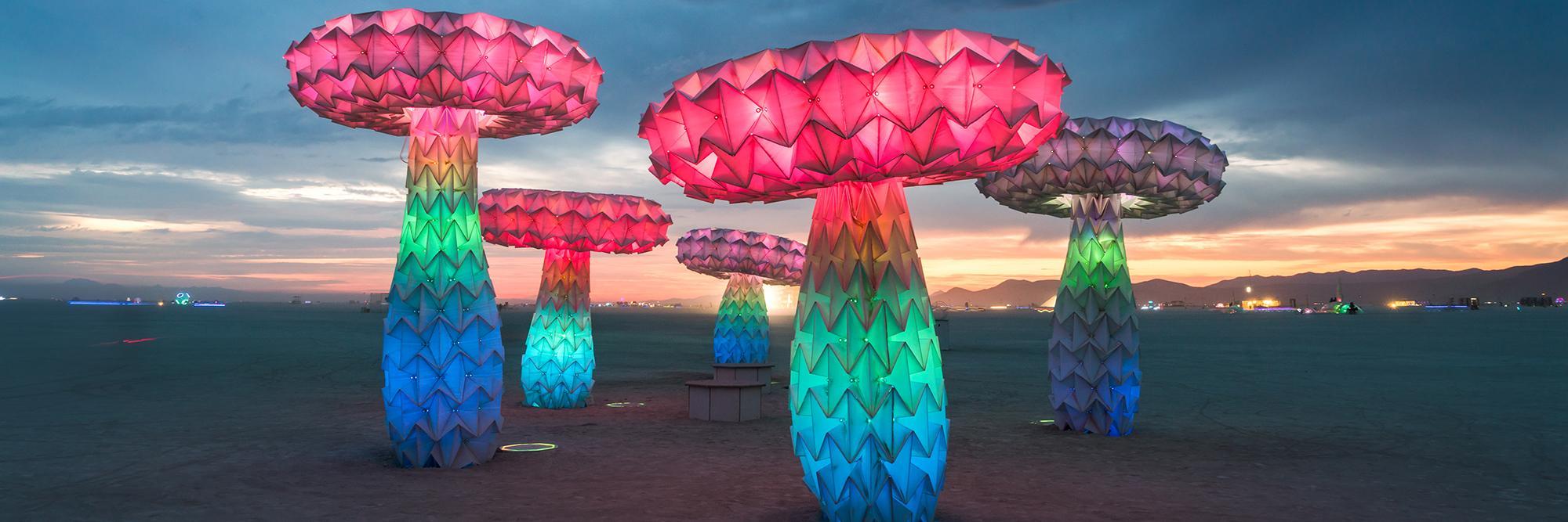 Renwick Burning Man.jpg