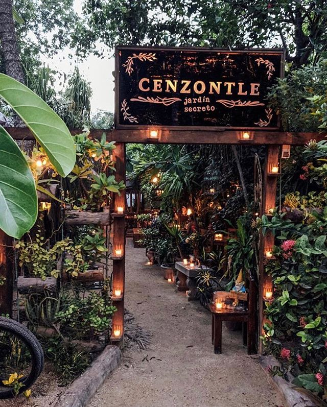 C E N Z O N T L E A cozy, warm, charming restaurant in the lush jungle of Tulum is a favorite among locals, visitors, and foodies where cocktails are created to perfection and dishes are fresh and full of flavor. . This is a perfect location for dinner and private dinner parties, which can be coordinated by yours truly. . #cenzontle #cenzontletulum #restaurantsoftulum #tulumrestaurant #visittulum #tulumeats #tulumcocktails #heaveninmymouth #tulummexico #tulumconcierge #tulumtips #thebeachplanner