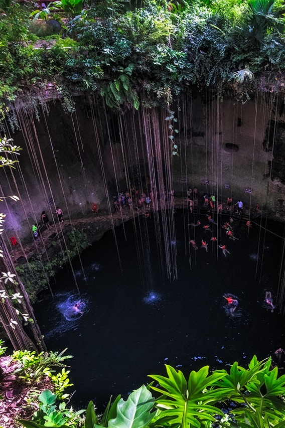 "I like to call cenotes the ""gems"" of Mexico. They are natural pits or sinkholes filled with mineral rich waters. All cenote tours are unique, enchanting, and VIP. A must see during your escapade through Mexico."