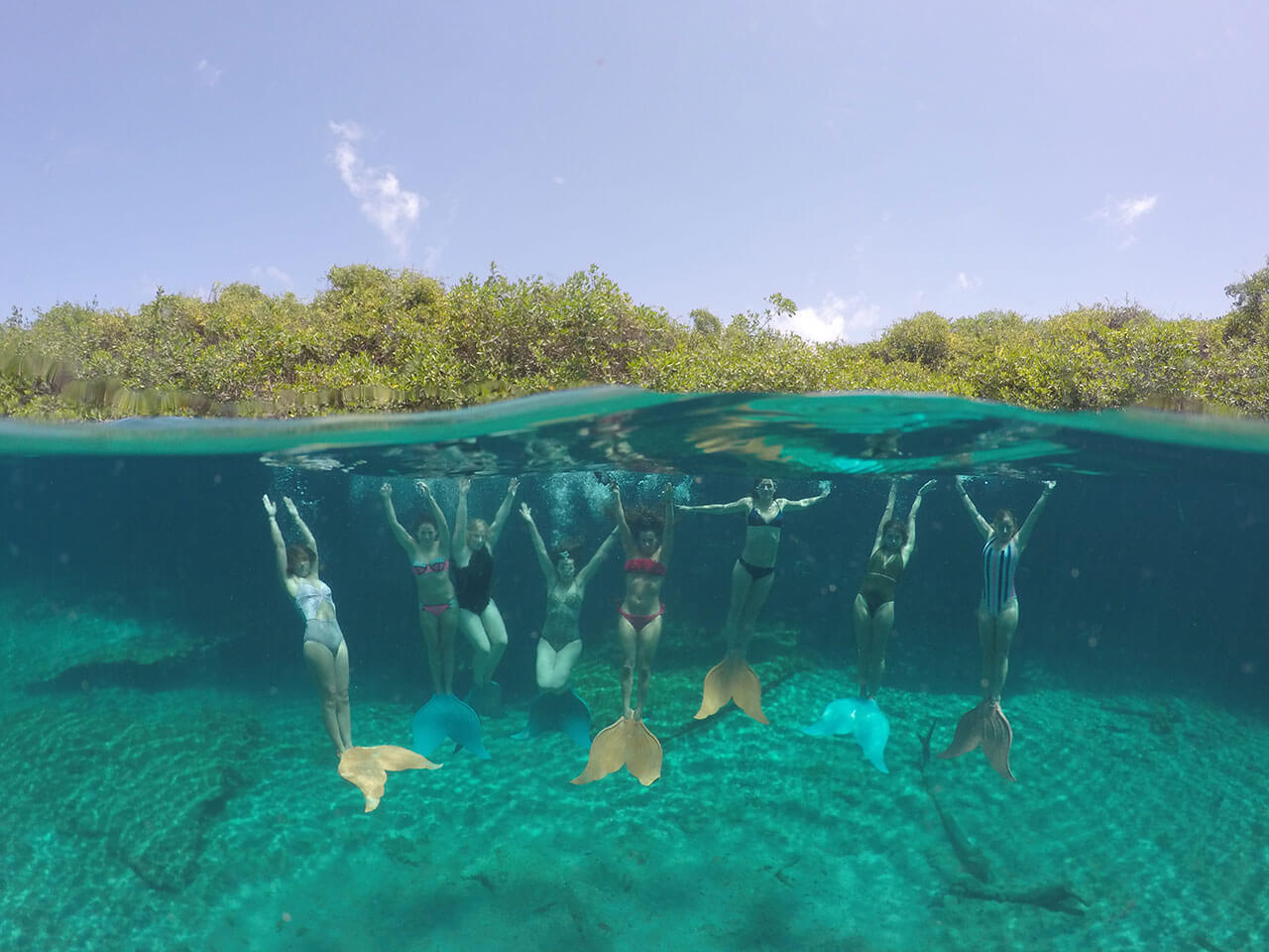 mermaid-school.jpg