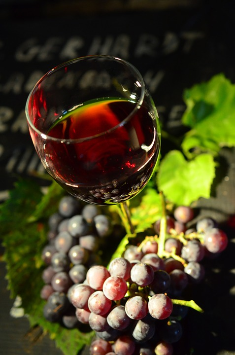 wine glass grapes still life photography