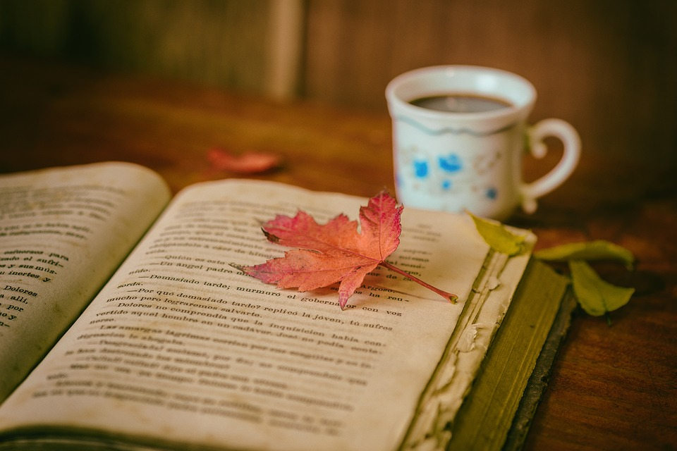book tea leaf fall autumn