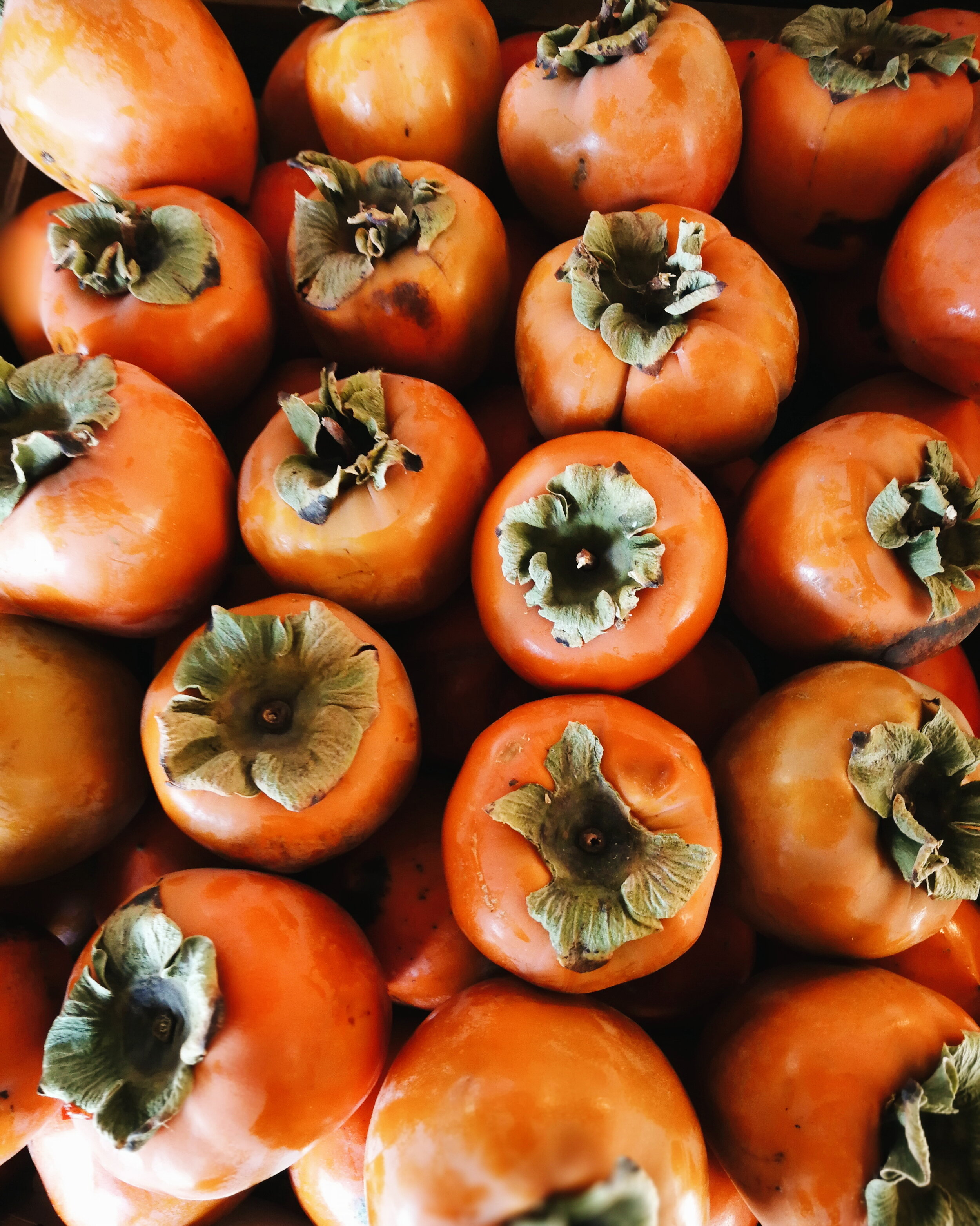 Hachiya Persimmons - Hachiya Persimmons have an acorn shape and tend to be more orange than Fuyu Persimmons. They are astringent which means they need to be really soft to eat (must have a jelly like consistency). They are typically used for baking and cooking.