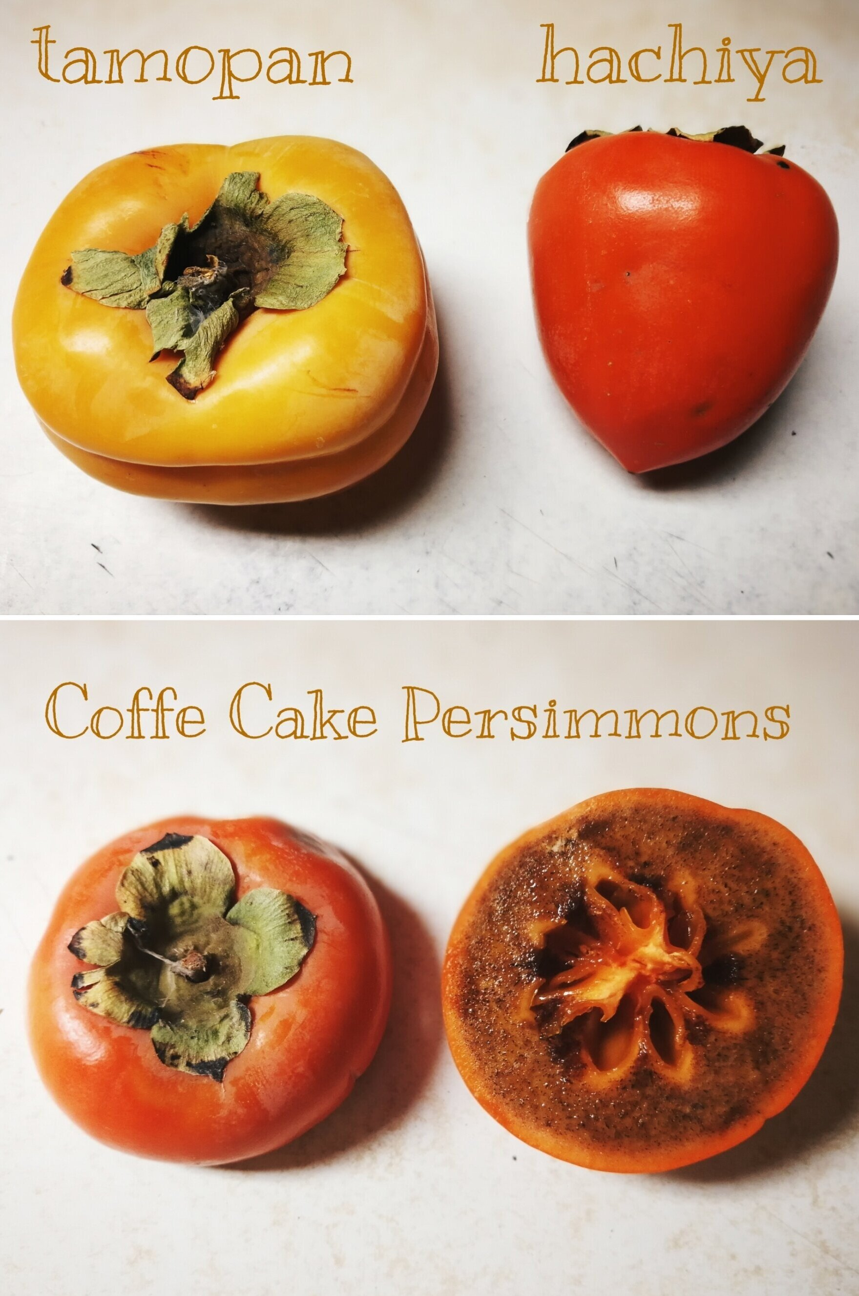 Tamopan and Coffee-Cake Persimmons - Specialty varieties only sold at select locations.