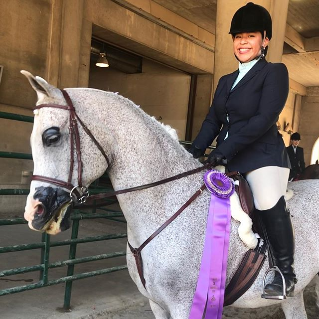 Phenomenal Thursday at Region 10!!! Elated for our riders, horses, and owners!  Reserve: Brooke and Sprat - HA Side Saddle  Top 5: Bella and Luke - PB Hunt Pl Select 15-18 Cassie and Tilly - HA English Show Hack Open Meghan and Donte - PB Hunt Pl Select 19-39 Ellie and Finn - Walk/Trot Equitation Lily and Pacino - PB Western Pl 18 and under Mia and Luke - PB Side Saddle ATR Cassie and Danny - PB Hunt Pl Jr Horse Tilly and Katherine - HA Country English Pl JTR