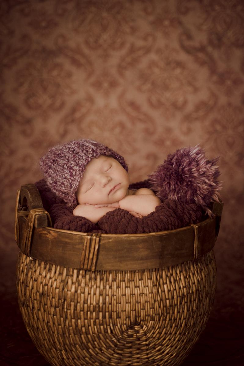 newborn2012_039.jpg