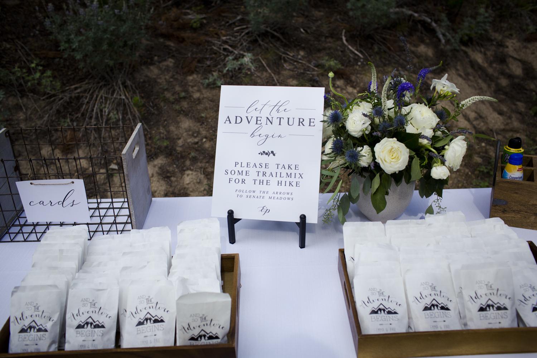 galena_mountains_vows_wedding-senatemeadows-026.jpg