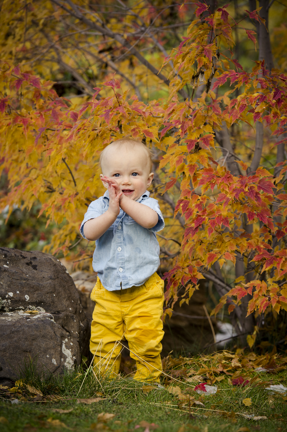 fall_lifestyle_family_leaves_candid_playing-007.jpg